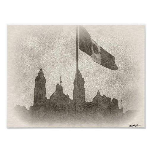 Catedral en el Zocalo del DF con la Bandera 6 Photo Art