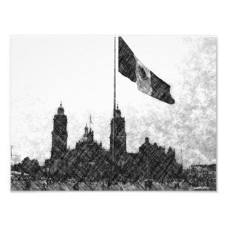 Catedral en el Zocalo del DF con la Bandera 8 Art Photo