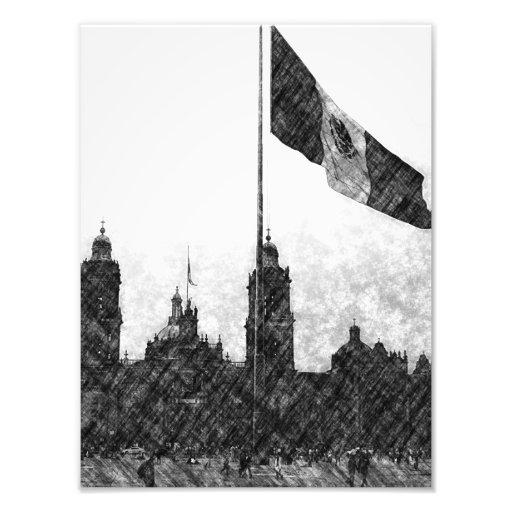 Catedral en el Zocalo del DF con la Bandera 8 Photo