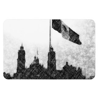 Catedral en el Zocalo del DF con la Bandera 8 Rectangular Magnets