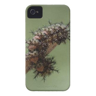 Caterpillar iPhone 4 Cases