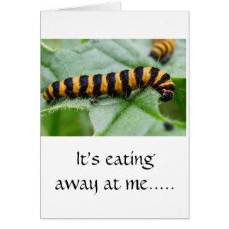Caterpillar - I'm sorry card