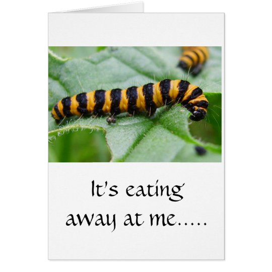 Caterpillar - I'm sorry card