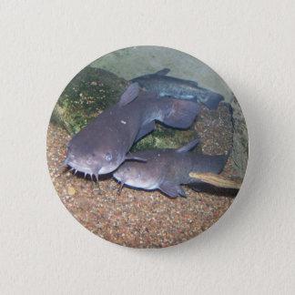 Catfish fishing zoo 6 cm round badge