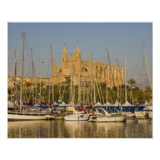 Cathedral and marina, Palma, Mallorca, Spain 2 Poster
