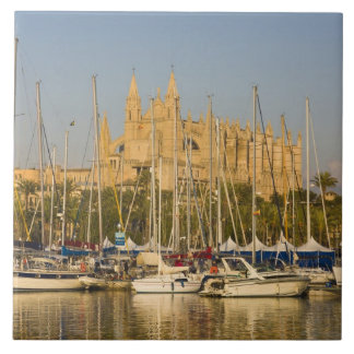 Cathedral and marina, Palma, Mallorca, Spain 2 Tile