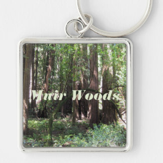 Cathedral Grove In Muir Woods Key Ring