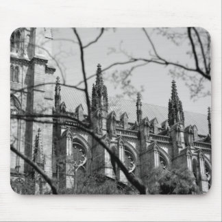 Cathedral in Spring Mouse Mat