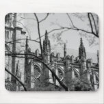Cathedral in Spring Mousepads