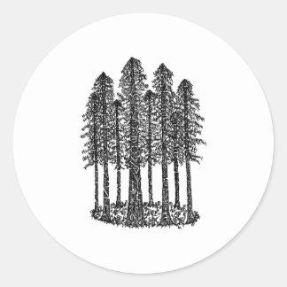 Cathedral Ring (Coastal Redwoods Sketch) Round Sticker