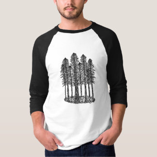 Cathedral Ring (Coastal Redwoods Sketch) Tee Shirt