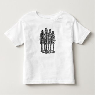 Cathedral Ring (Coastal Redwoods Sketch) Tee Shirts