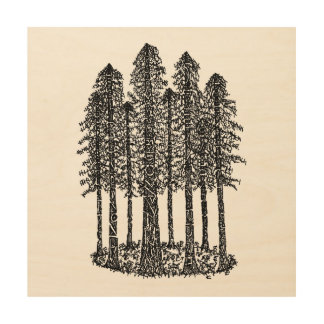 Cathedral Ring (Coastal Redwoods Sketch) Wood Canvas