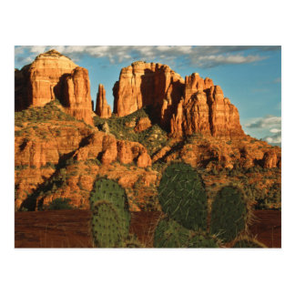 Cathedral Rock at Sunset from Secret Canyon Postcard