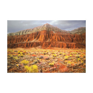Cathedral Valley Canvas Print