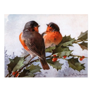 Catherine Klein: Robins on Holly Postcard