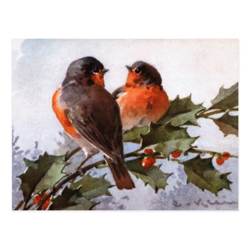 Catherine Klein: Robins on Holly Post Cards