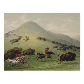 Catlin Native American Art Postcard
