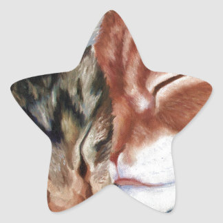 catmainecoons.jpg star sticker
