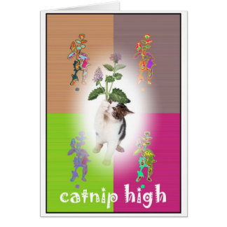 Catnip High Greeting Card