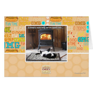 Catnuts roasting card