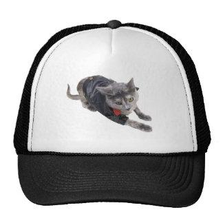 CatProwl092009 copy Hat
