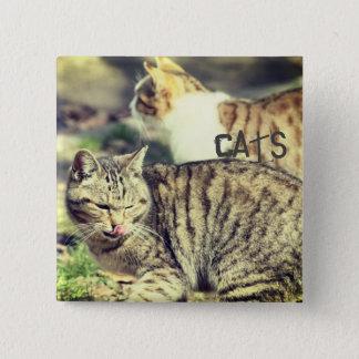 Cats 15 Cm Square Badge