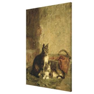 Cats, 1883 canvas print