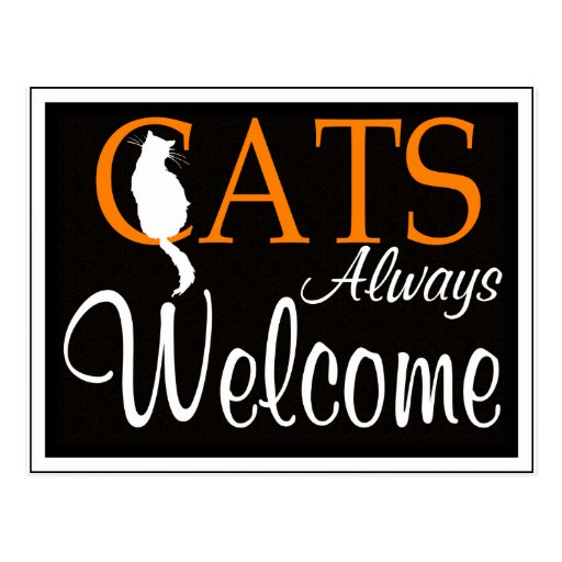 Cats always welcome sign post cards