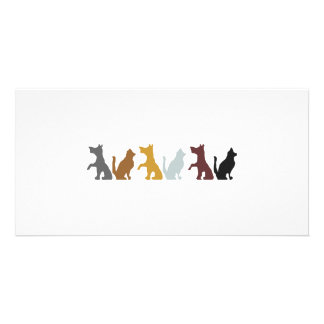 Cats and Dogs cartoon pattern Custom Photo Card