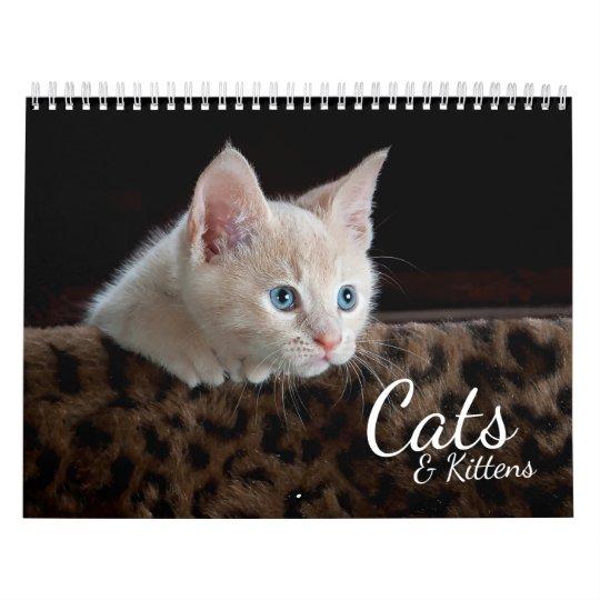 Cats and Kittens 2018 Pet Photo Calendar