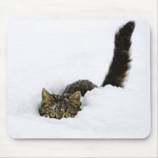 cats_and_snow_ (4) mouse pad