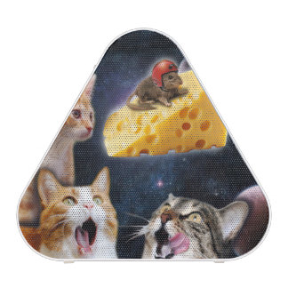 Cats and the mouse on the cheese