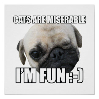 CATS ARE MISERABLE I'M FUN :-) MEME POSTER