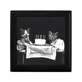Cats birthday gift box