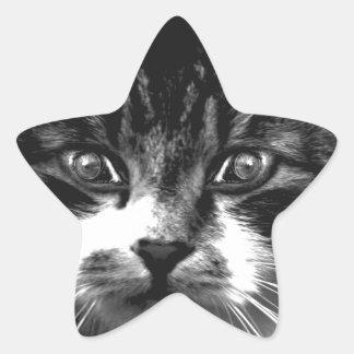 cats bright eyes sticker
