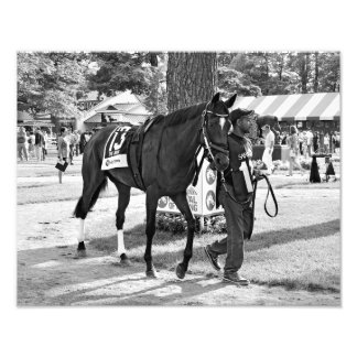 Cat's Claw wins the Waya Stakes Photo Art