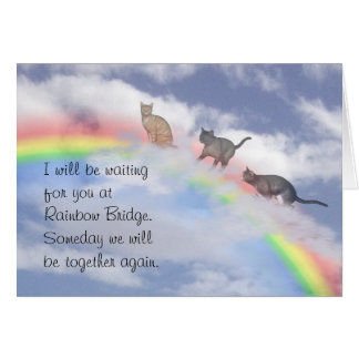 Cats Climbing Up Rainbow Bridge Card