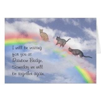 Cats Climbing Up Rainbow Bridge Greeting Card