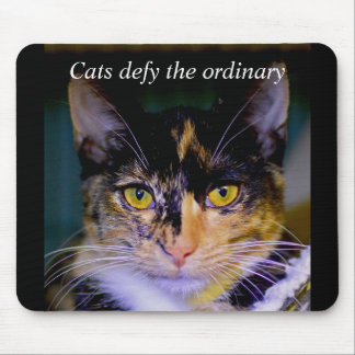 """""""Cats defy the ordinary"""" Ashes Mouse Pad"""