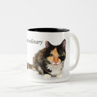 """Cats defy the ordinary"" Coffee Mug"