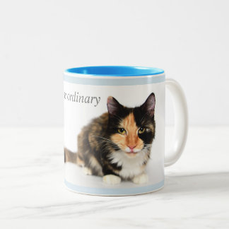 """Cats defy the ordinary"" Coffee Mug in light blue"