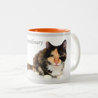 """Cats defy the ordinary"" Coffee Mug in orange"