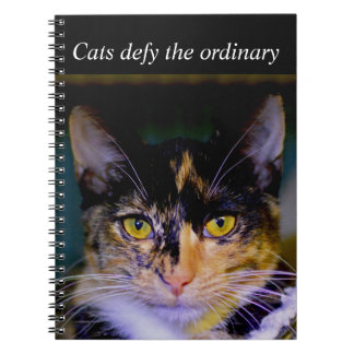 """""""Cats defy the ordinary"""" Notebook"""