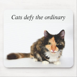 """""""Cats defy the ordinary"""" Phoebe Mouse Pad"""