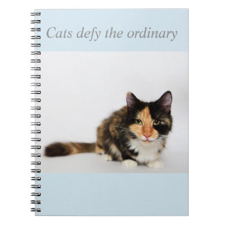 """""""Cats defy the ordinary"""" Phoebe Notebook"""