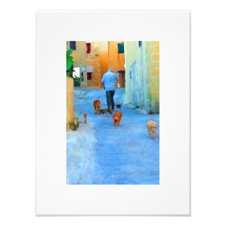 "Cats & Dogs 12""x16"" Photo Print"