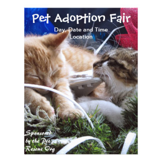 Cats Dogs Animals Adoption Event, Save a Pet Fair 21.5 Cm X 28 Cm Flyer