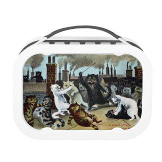 Cats Duke it Out on a Rooftop Lunchbox