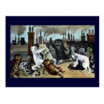 Cats Duke It Out on a Rooftop Postcard